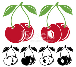 Cherries vector illustration in color and black and white