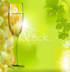 against the glass of wine grapes and green leaves