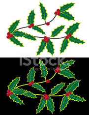 Vector Christmas elements - branch with holly berries