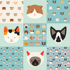 Cute cats vector pattern set, illustrations on colored background