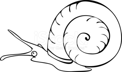 Coloring page freshwater snail