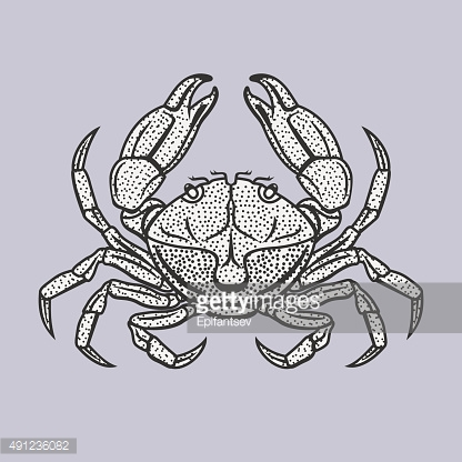 Vector illustration of crab in vintage style.