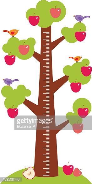 Big tree green leaves birds red apples Children height meter