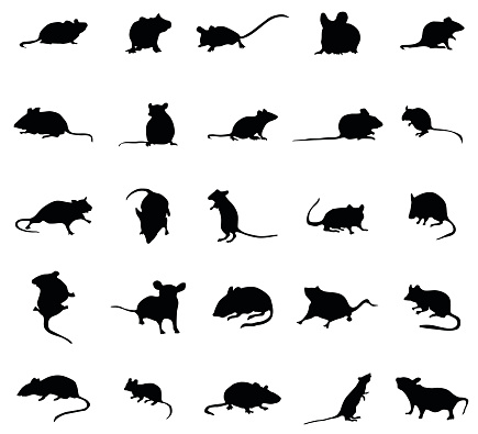 Mouse silhouettes set
