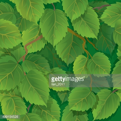 Seamless pattern with green spring leaves of birch.