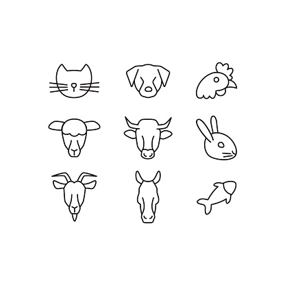 Domestic animals line icons set