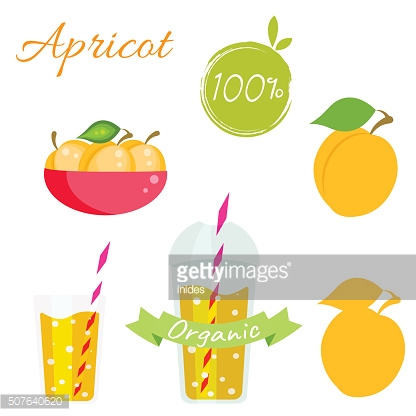 Apricot fruit and juice vector set