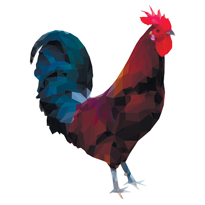 Polygonal illustration of rooster