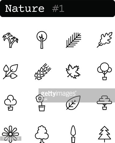 Set line thin icons. Vector. Nature, plants