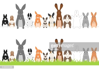 set of standing rabbits in a row