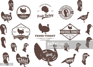 Vector Turkey Labels, Icons, Charts and Design Elements