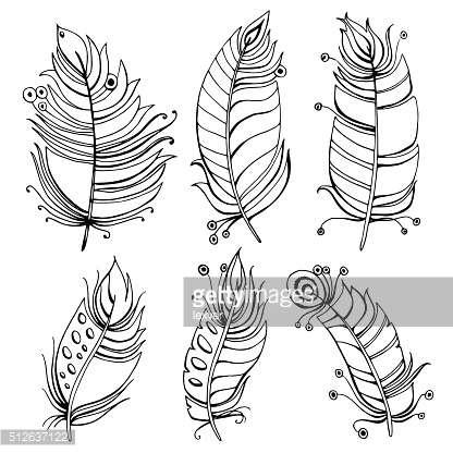 hand drawn line art of feathers with ornaments