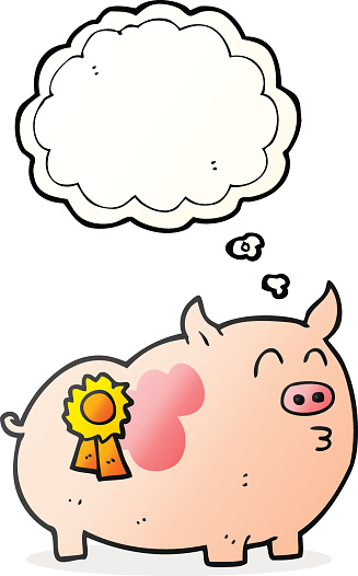 thought bubble cartoon prize winning pig