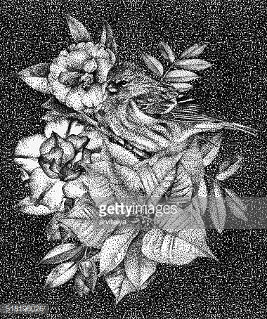 Composition of different flowers, birds and plants drawn by hand