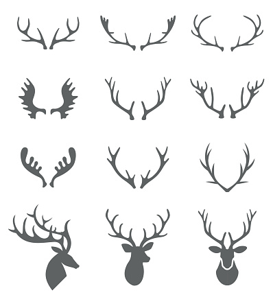 I0000H8jJ8QotgFc moreover Hand Drawn Deer Antlers Vectors 1375510 further 289004501078281950 additionally Two Carnations likewise E5 8B 95 E7 89 A9  E8 B6 B3 E8 B7 A1 Seamless  E3 83 91 E3 82 BF E3 83 BC E3 83 B3 7696717. on deer feet clip art