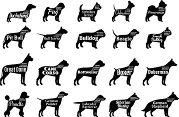 Vector dog silhouettes collection isolated on white