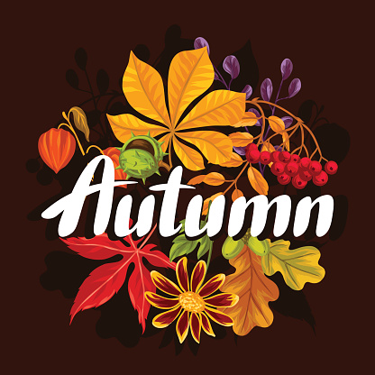 Background with autumn leaves and plants. Design for advertising booklets