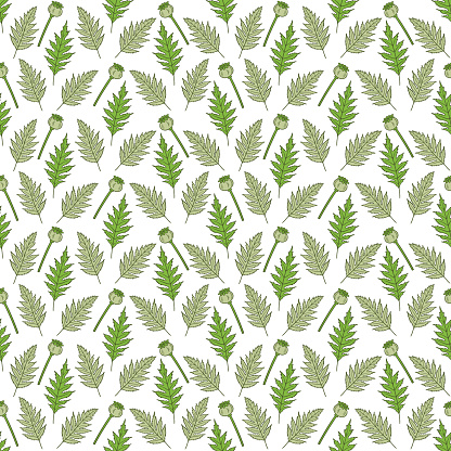 Seamless pattern with poppy heads and leaves.
