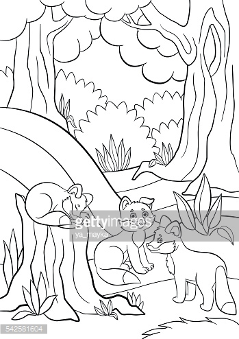 Coloring pages. Wild animals. Three little cute baby fox.