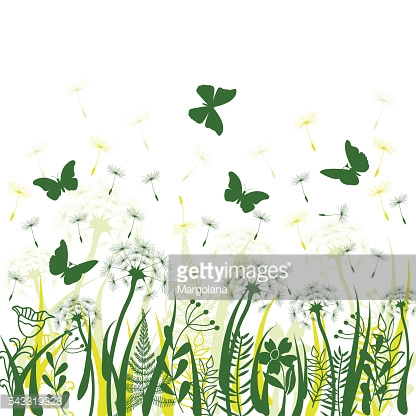 background with green grass, wild herbs,,dandelions