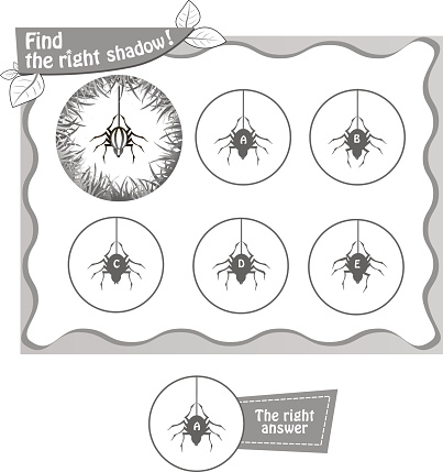 find right shadow spiderbv