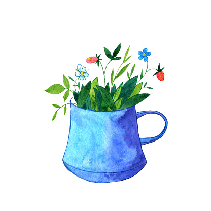 cup of tea with herbs, flowers and berries