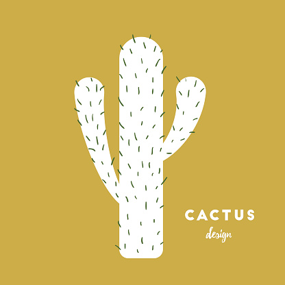 Cactus with needles