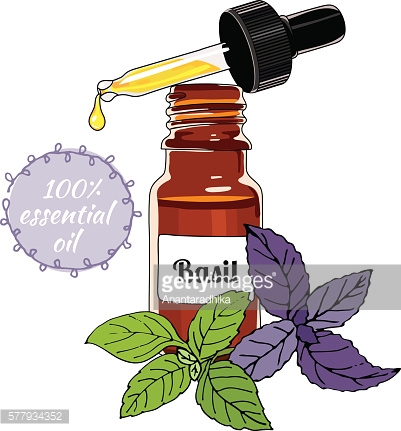 Bottle of Basil essential oil with dropper.