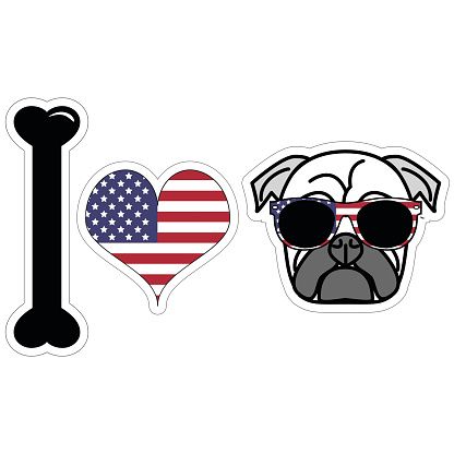 I love hipster pug illustration in color with American symbols