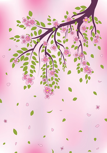 Pink blossoms on tree branch. EPS 10