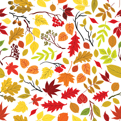 Autumn leaves seamless pattern background.
