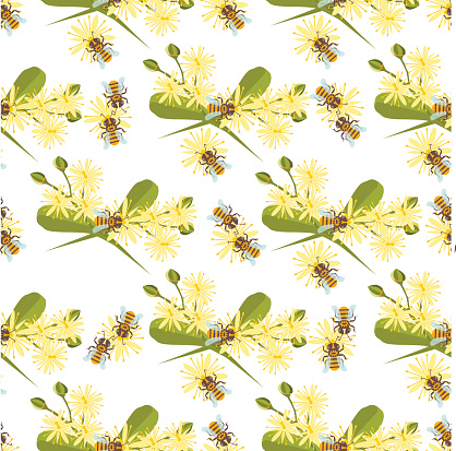 Honey bee with linden blossom seamless pattern vector.
