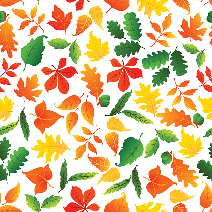 Color leaves seamless pattern background