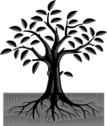 Tree,Root,Woodcut,Vector,Pl...