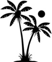 Palm Tree,Tree,Silhouette,C...