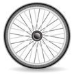 Bicycle,Wheel,Cycling,Tire,...