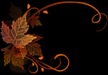 Maple Leaf,Autumn,Leaf,Seas...