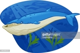Whale,Sea,Color Image,Illus...