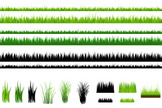 Grass,Silhouette,Blade of Grass,Green Color,Turf,Backgrounds,Lawn,Herb,Springtime,Nature,White,Black Color,Plant,Outline,Front or Back Yard,Growth,Field,Pattern,Rural Scene,Ilustration,Seedling,Effortless,Meadow,Lush Foliage,Sapling,Horizontal,Summer,Isolated On White