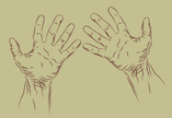People,Human Hand,Vector