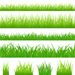 Grass,Green Color,Blade of ...