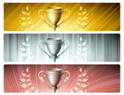 Trophy,Gold,Gold Colored,Br...
