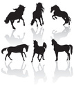 Horse,Silhouette,Show Jumpi...