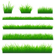 Grass,Vector,Lawn,Leaf,Bush...
