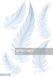 Feather,Computer Graphics,N...