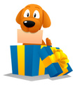 Dog,Birthday,Christmas,Gift...