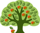 Apple Tree,Tree,Apple - Fru...