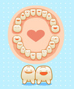 Human Teeth,Baby,Dental Hea...