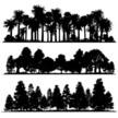 Tree,Silhouette,Forest,Palm...