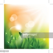 Sun,Vitality,Environment,Nature,Social Issues,Horizontal,Extreme Close-Up,Blurred Motion,Defocused,Close-up,Cold Drink,Plant,Drinking Water,Green Color,Water,Blade of Grass,Sun,Springtime,Summer,Spray,Drop,Rain,Dew,Lawn,Sunset,Sunbeam,Fog,Meadow,Sunlight,Illuminated,Backgrounds,Color Image,Grass,Glitter,Raindrop,Glowing,Environmental Conservation,No People,Photography,Vector,Morning,Macro,Environmental Issues